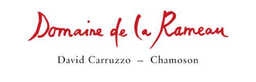BONVIN CAVE SUISSE DE L'ANNEE logo