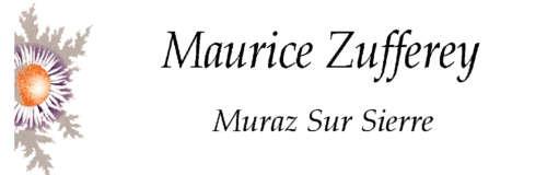 Maurice Zufferey